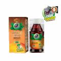 Topvet - Fenyklový dětský sirup 120g s fruktozou - pomáhá tlumit křečové bolesti v trávicím ústrojí, vhodný i pro diabetiky